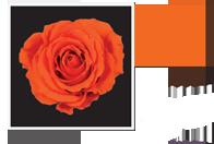Flower Cube Arancio 5x5