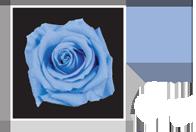 Flower Cube Azzurro 5x5