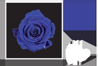 Flower Cube Blu 5x5